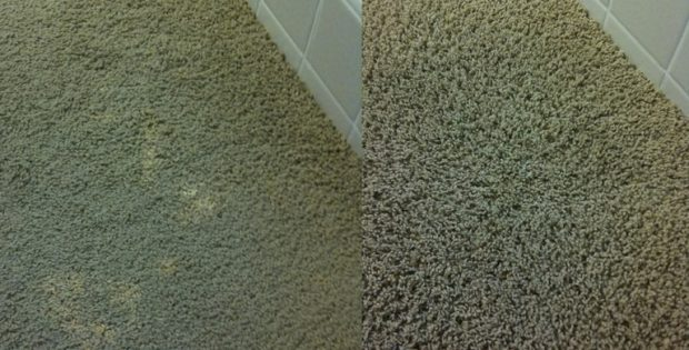 How To Dye Carpet